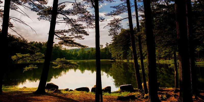 Birdsboro Reservoir