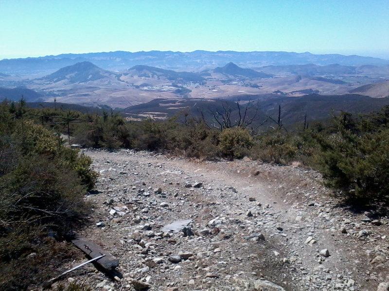 Top of Bottanicals, West Cuesta Ridge