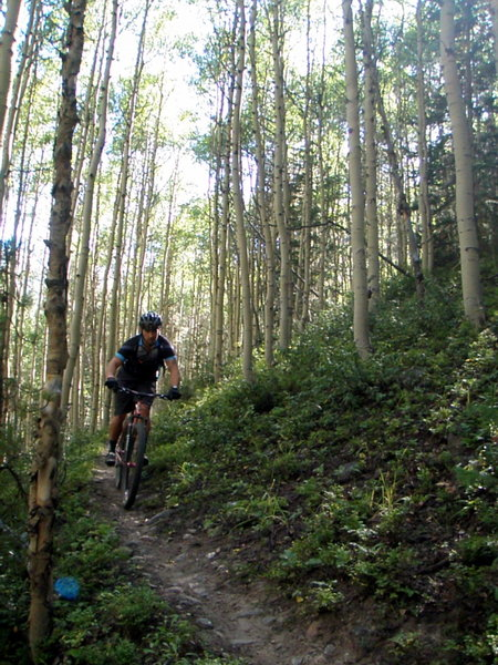 Ripping through the shade of the aspen forest on the lower sections of Green's Creek Trail.