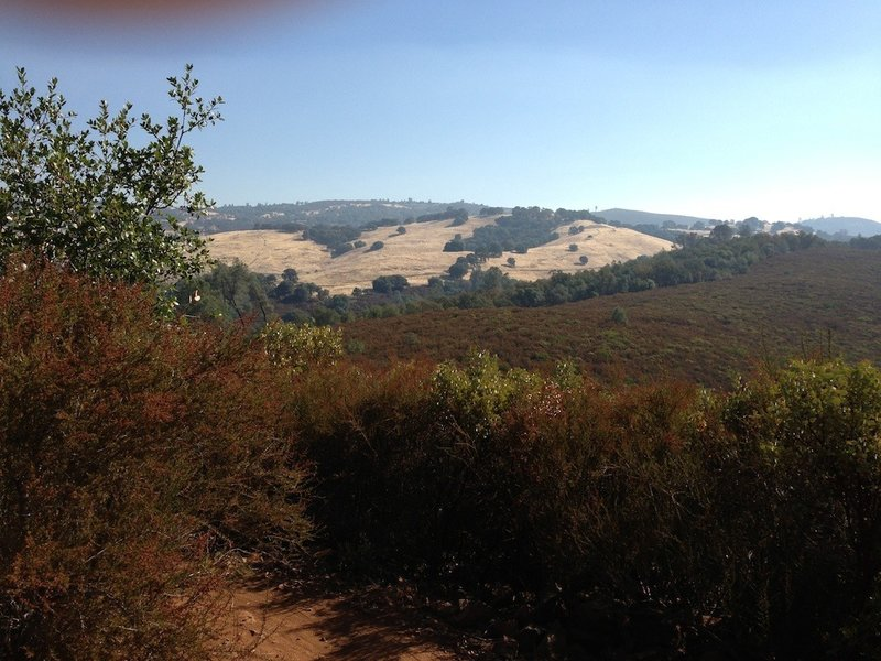 Ridge Summit