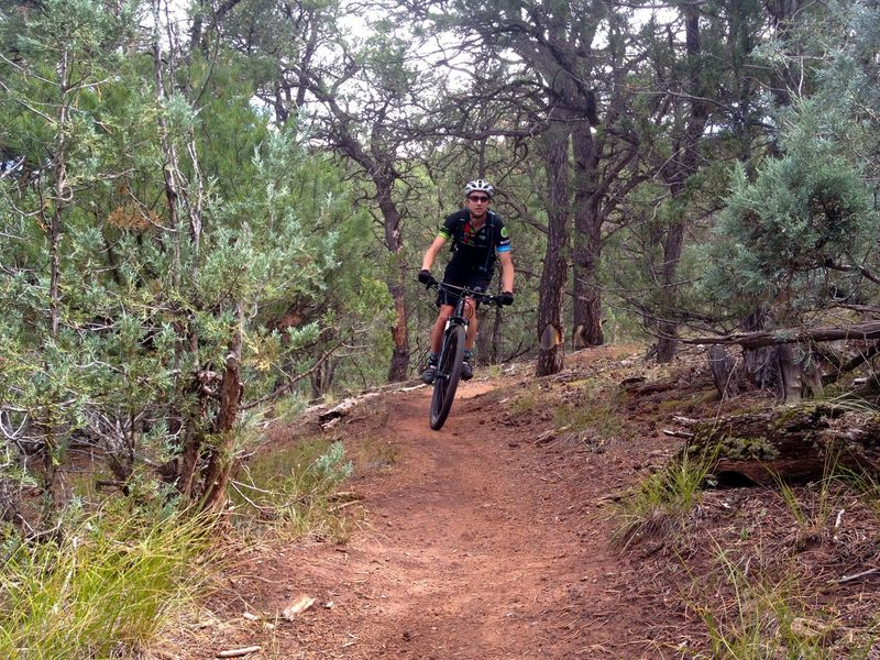 Fun on the Faerie Trail
