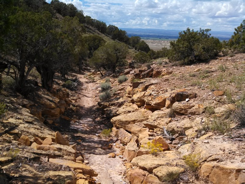 The trail never gives up its technical nature.