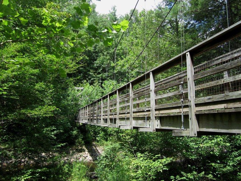 Suspension Bridge over North River