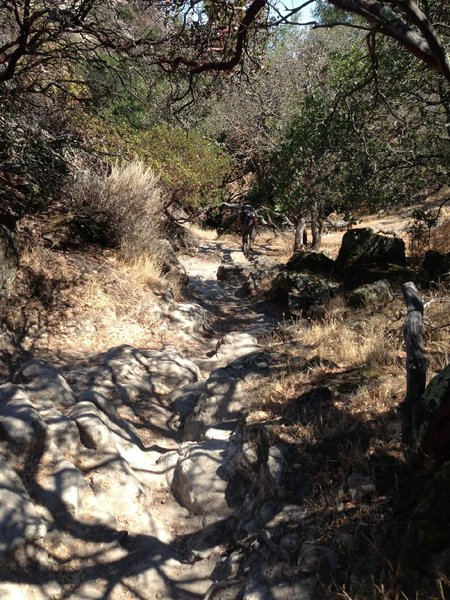 Short rocky gully one direction leads to Cave Trail the other to the Rock Garden both are harder than this....