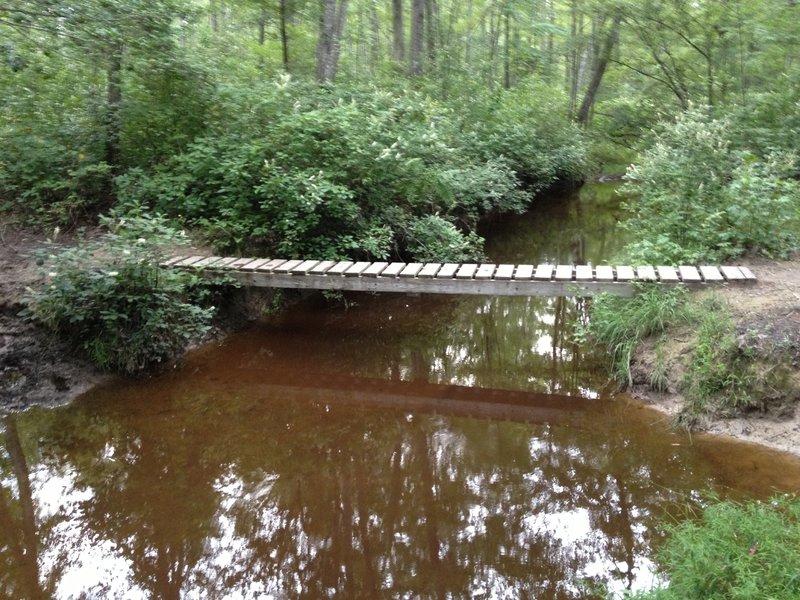 Long skinny bridge over western branch.