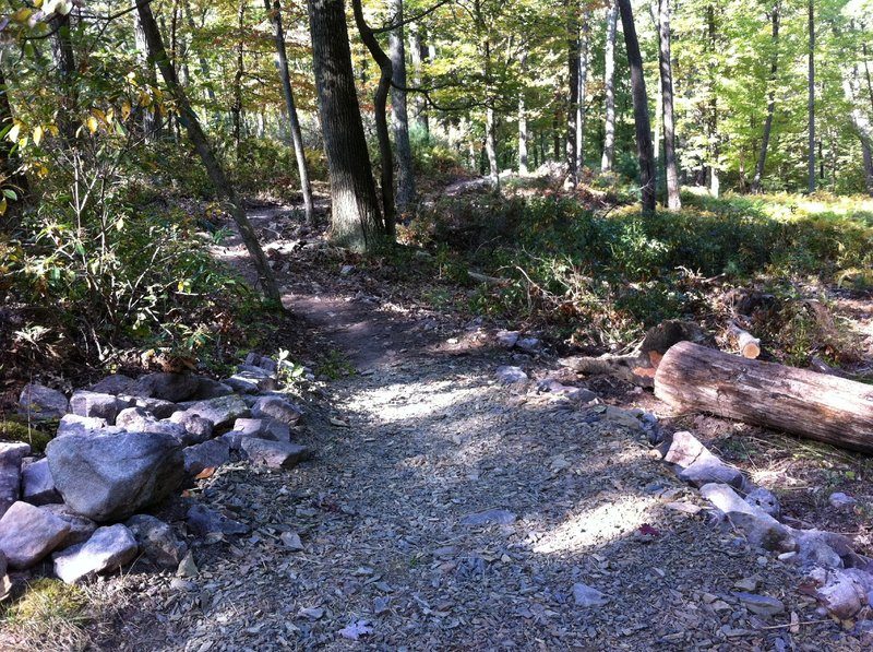 New entry to reroute for lower Lonberger Path