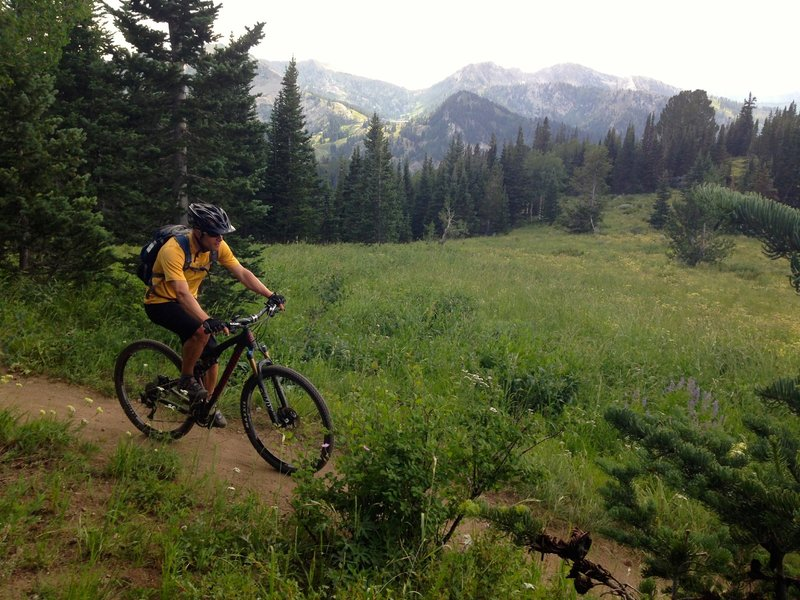 Large views over Big Cottonwood Canyon make this trail a favorite.