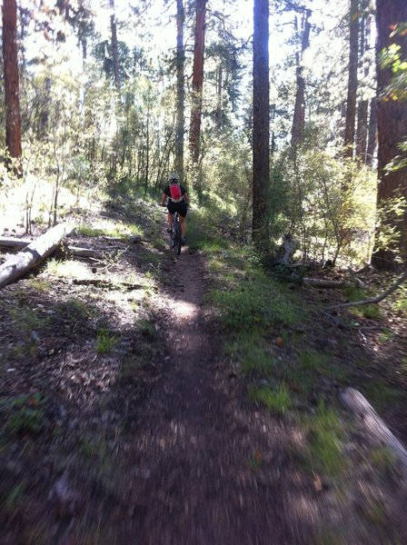 Fast riding on the Rainbow Rim trail between Fence and Locus Points.