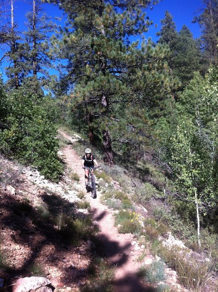 Descending a portion of the Rainbow Rim trail.