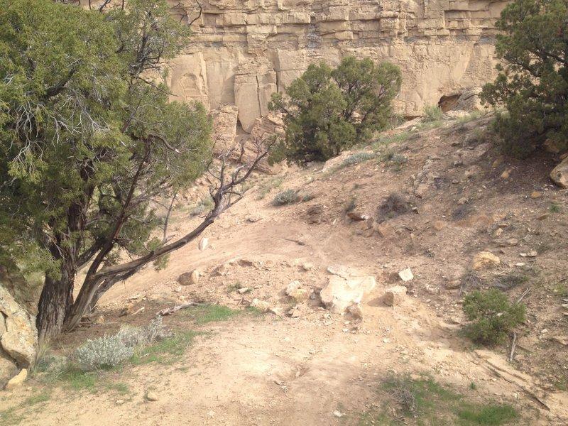 Berm'd up turns on the initial climb/decent