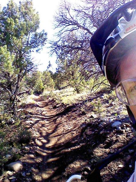 Fine singletrack on dirt with few rocks