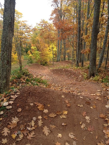 Fall color and paired berms on Sure Would.