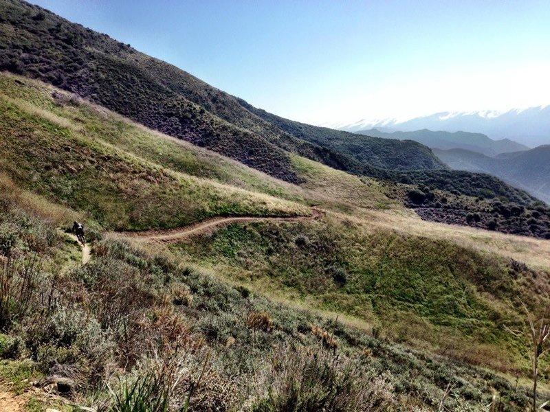 santa cruz trail meadow
