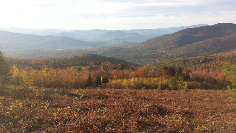 Southern Presidentials
