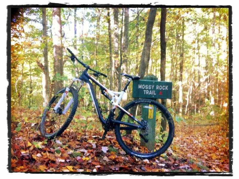 Trail marker at top of Mossy Rock