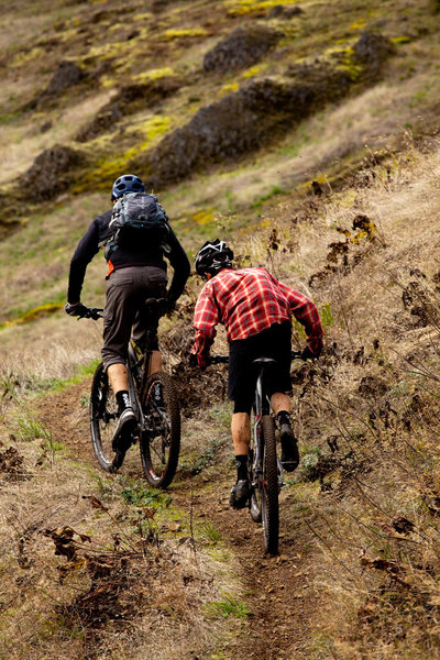 Across the open grassy hillsides on Tire Mountain