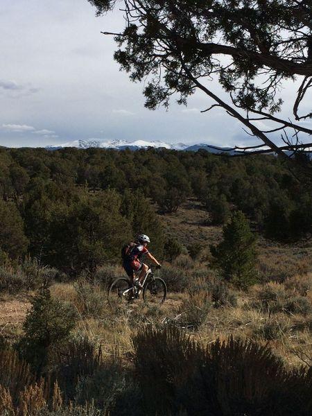 Halfway up Redneck Ridge