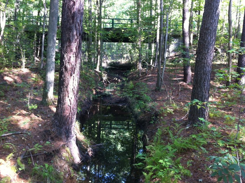 Cedarville State Forest stream crossing