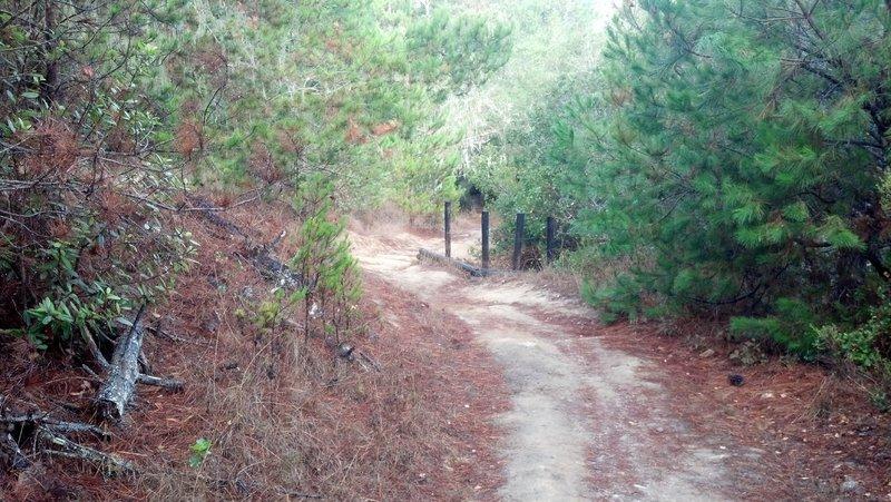 down dairy trail