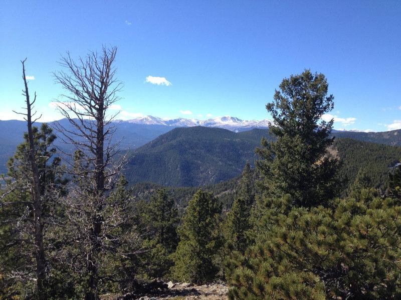 Top of Bergen Peak.