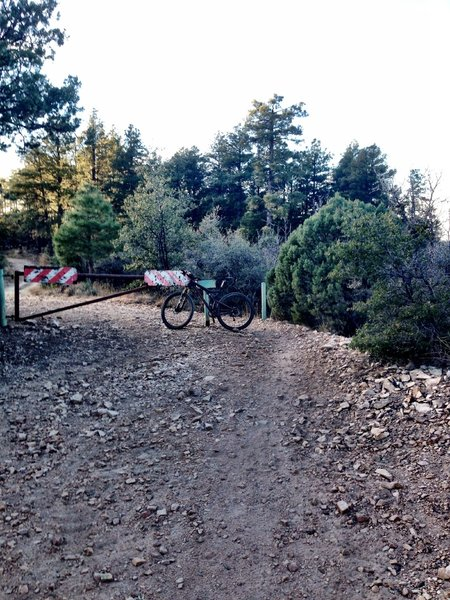 The gate at the end of the singletrack.  Go around the gate and follow the doubletrack to Trail 48