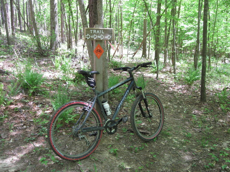 Signage leading to the singletrack reroute to the steep climb along Lost Cemetery Rd