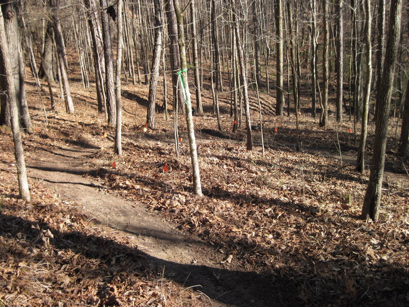 An almost textbook IMBA horseshoe shaped switchback along the singletrack reroute along the Lost Cemetery Road.