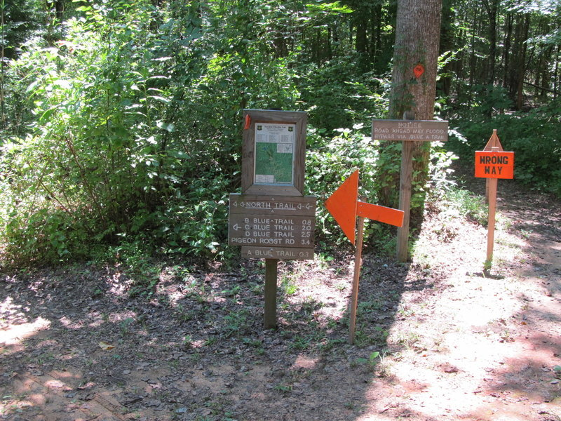 "Lost Cemetery Road and the North Trail Trailhead. Note: Signage is for the annual ""Skool of Hard Nox"" 50 Mile Endurance Race"