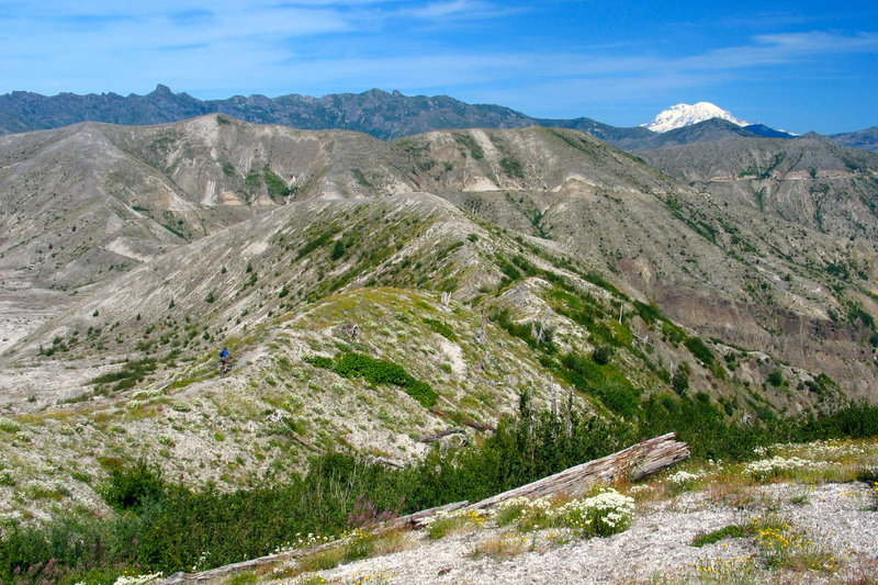 Climbing up a ridge on the scenic Plains of Abraham Trail at the base of Mt. St. Helens.