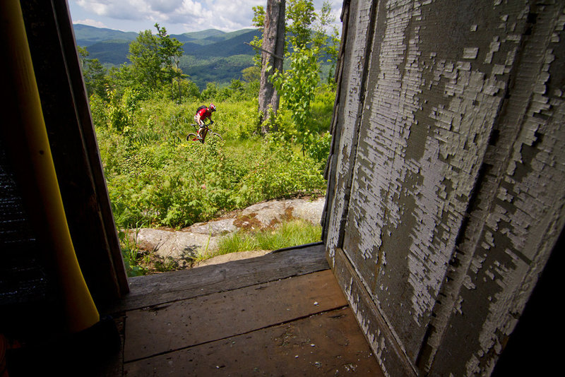 Looking out from the cabin into mountain biking bliss in the Greens.