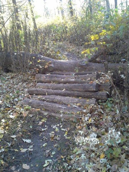 Log pile challenge