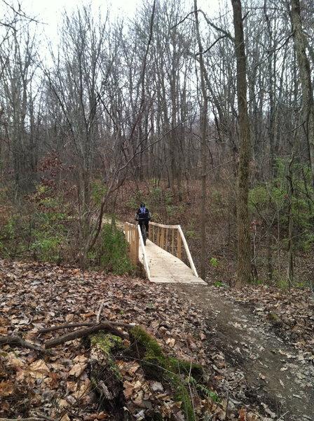 Nice ladder bridge
