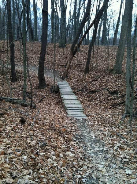 Another ladder bridge