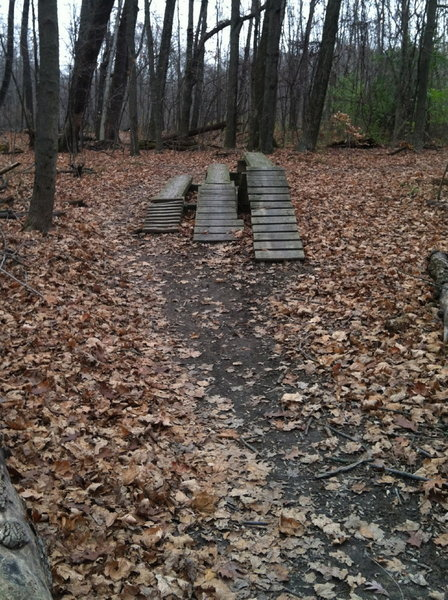 As soon as you come into the beginner trail to the right are a bounce of obstacles to practice on. This is just one of many.