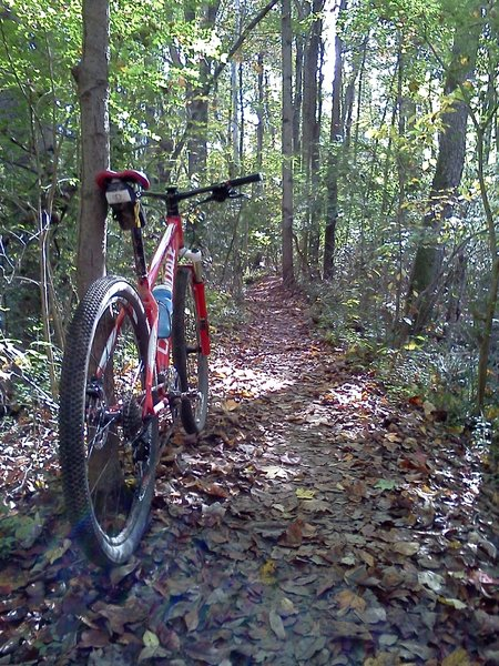 Conveniently located in town, White Park is great for an after work ride.