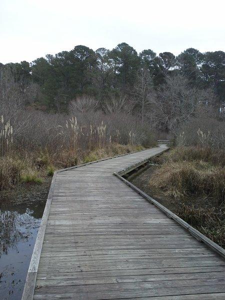 Boardwalk along the upper end of Lakeside Trail