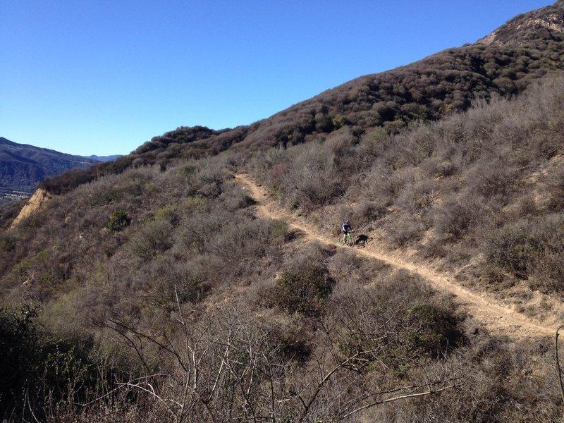 Cruising across a hill side