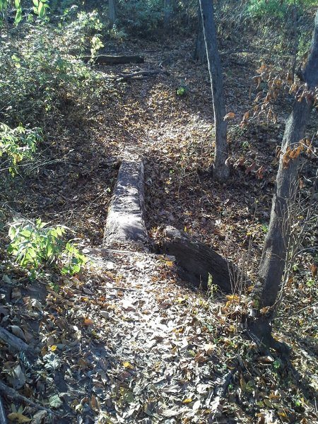 Log skinny crossing on Blue Mound.
