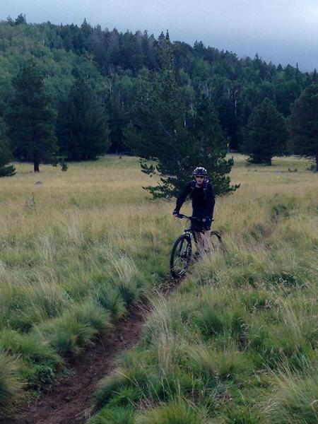 Jeff Cruizing the AZ trail