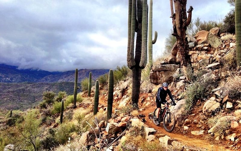 BCT Trail