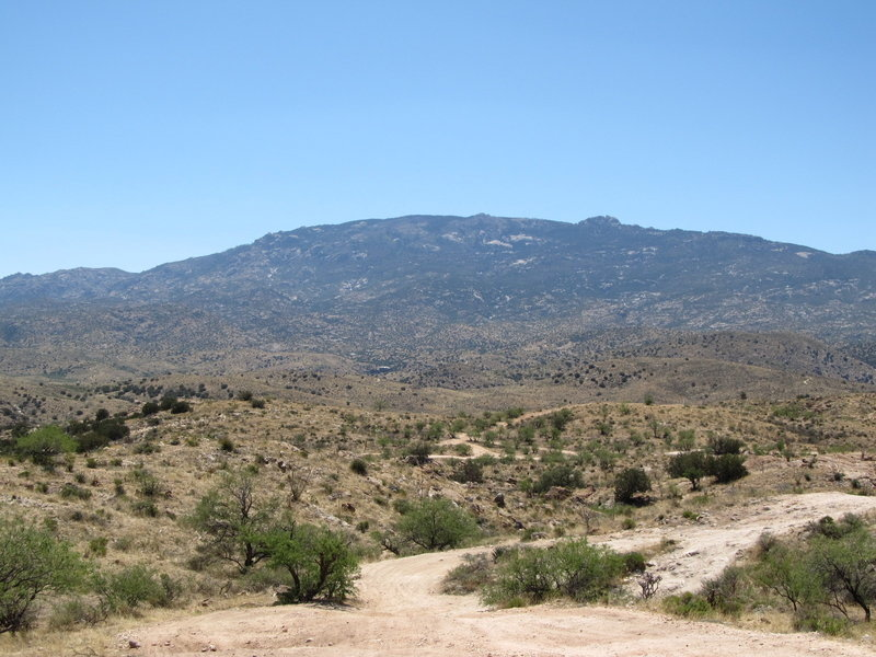 Looking out across the Coronado National Forest towards Chiva Falls