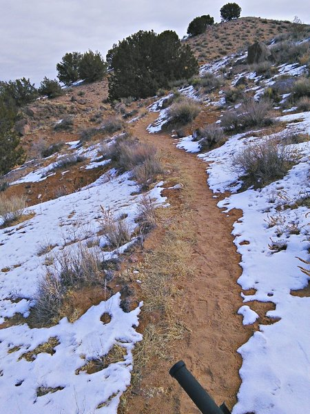Climbing out of the Bowl proper the trail is nicely contoured so grades are moderate