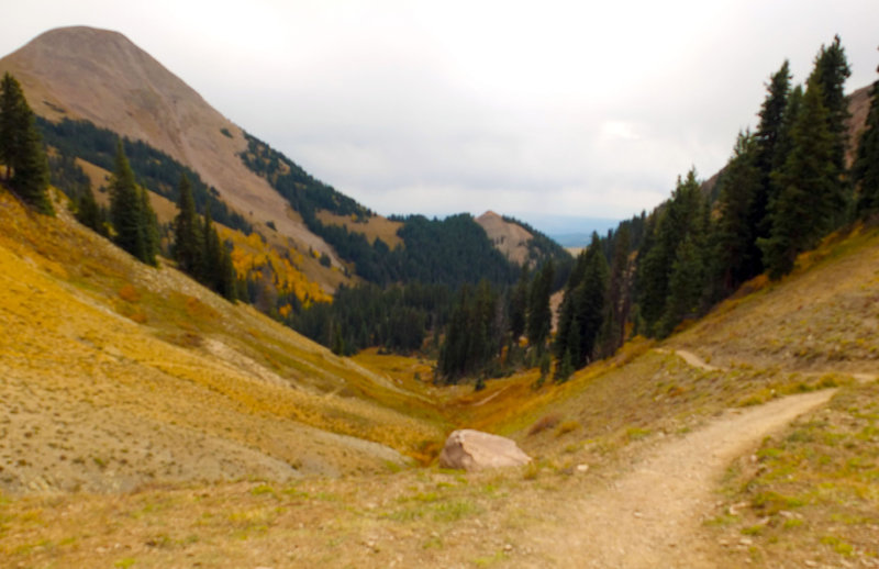 The view back down the trail up to Burro Pass.
