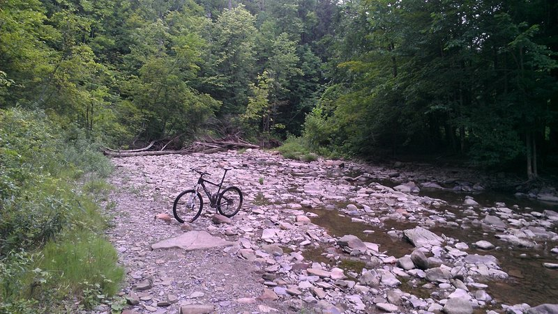 There's no bridges across Hunters Creek in the park.  This is one spot where you can hike your bike across easily.