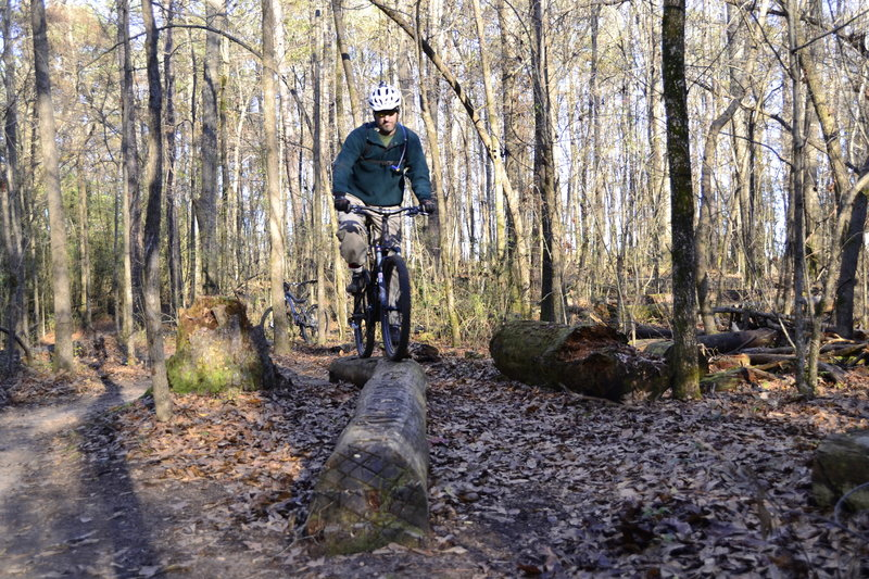 Main Trail - Log Feature