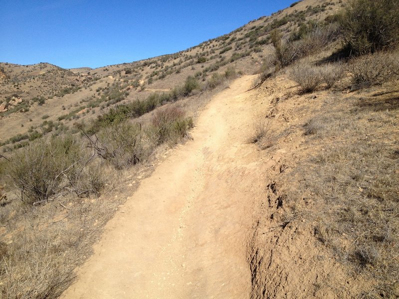 Nice easy singletrack in this section of the ride
