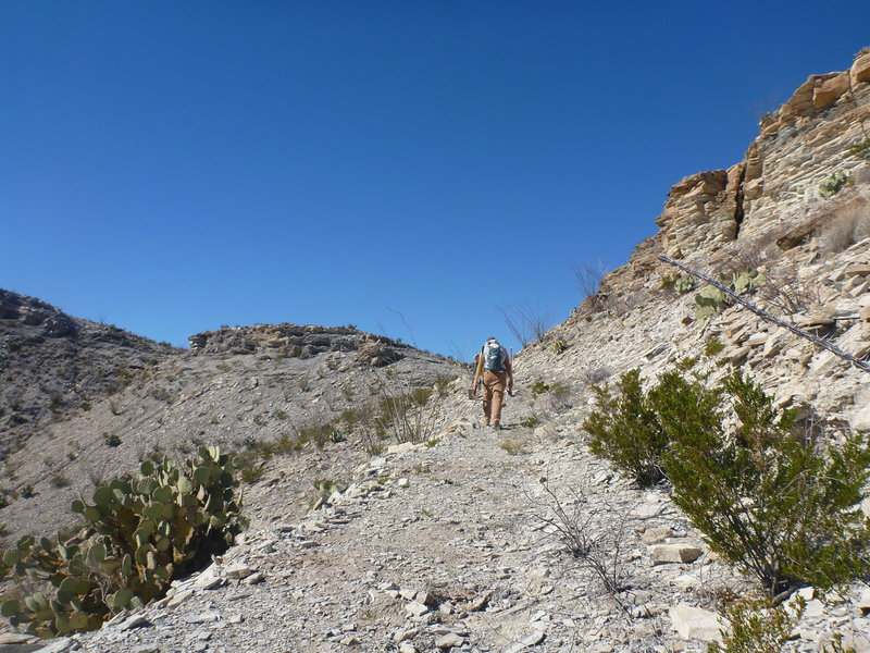 The climb up from the Dome Loop to the Fresno Divide