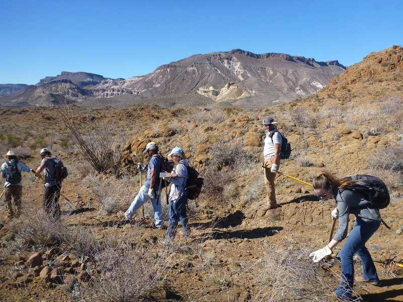Big Bend Trails Alliance volunteers building the Fresno Divide Trail.