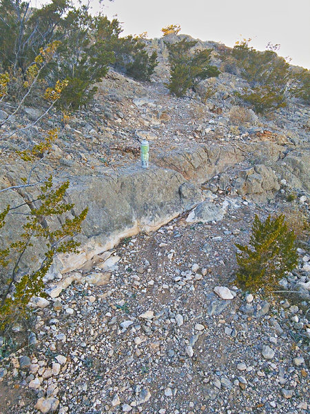 Off-camber step between switchbacks on the east side. Water bottle for scale.