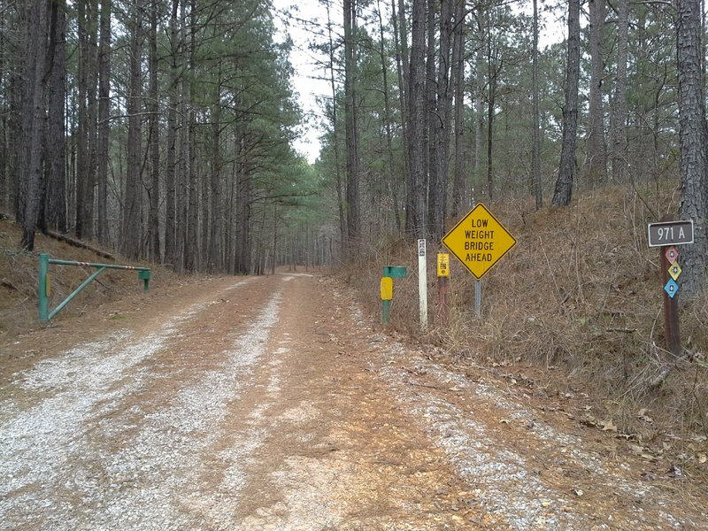 Looking towards the CW/Log Jump/Long Bridge Trailhead, from the Noxubee Hill Road and Pigeon Roost Road intersection/parking area.